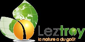 logo_LEZTROY